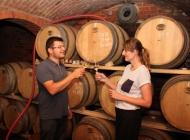 Izuzetna kvaliteta grožđa u kutjevačkom vinogorju s nešto ranijom berbom