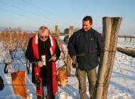 Orezivanjem trsova i blagoslovom loze obilježili početka radova u vinogradima