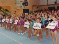 Požeški gimnastičari plasirali se na državno natjecanje u Nedelišće