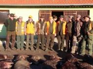 Svih 17 odstrijeljenih divljih svinja ide za požeški Caritas