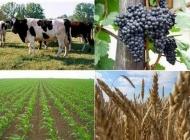 Otvoren natječaj za stručno osposobljavanje poljoprivrednika