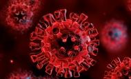Hrvatska u 24 sata bilježi novih 2.698 pozitivnih osoba na korona virus uz 44 preminule osobe od Covid 19