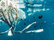Hrvatska zabranila plastične vrećice za nošenje!